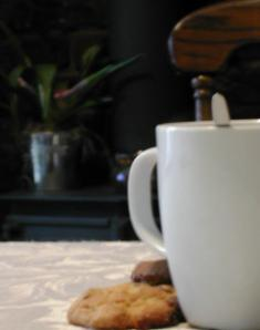 coffeecupnbacklr