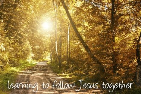 autumn path follow J